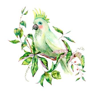 花、葉と水彩の白いオウム夏グリーティングカード