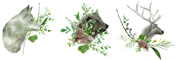 Watercolor wild animals set isolated on white background deer bear wolf