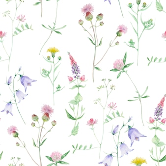Watercolor wildflower seamless pattern. clover and bell wild flowers. floral hand drawn texture isolated on a white background.