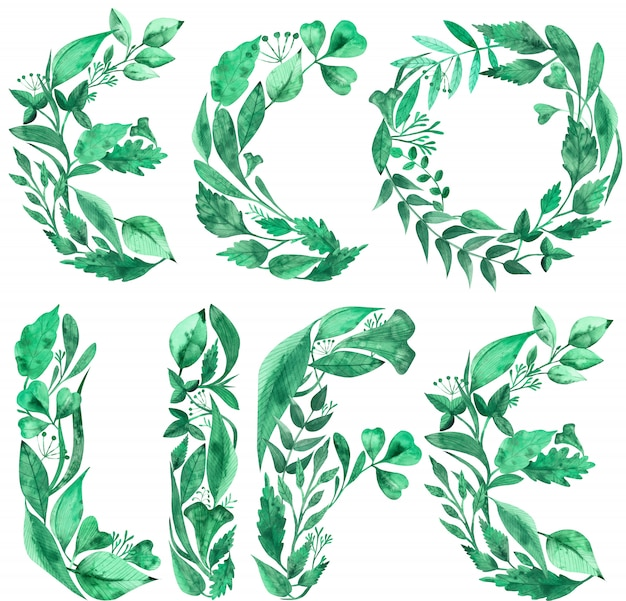 Watercolor word phrase eco life made of green leaves.