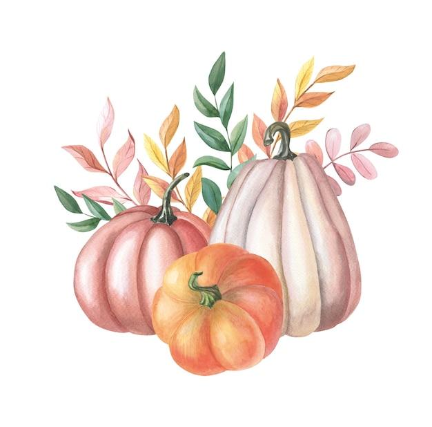 흰색 바탕에 노란색, 녹색, 빨간색 잎이 있는 수채색 빨간색, 주황색 호박. 가을