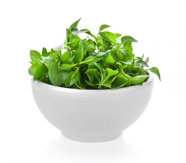 Watercress in a bowl isolated on white space