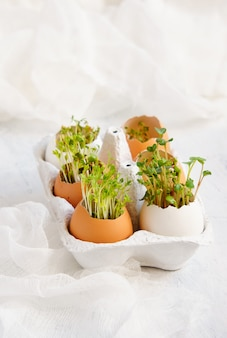 クレソンサラダと卵殻 - イースターカード