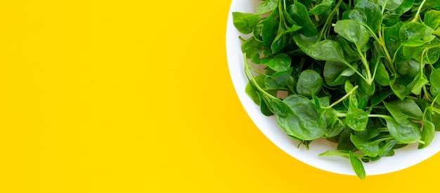 Watercress in white bowl on yellow background.