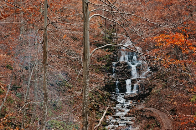 Waterfall borzhava with smoke from fire under the mountain village pylypets ski resort at autumn forest