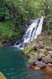 Водопад cascada de texolo в xico, мексика