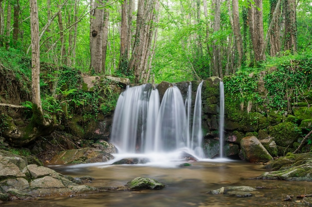 Waterfall in a catalonian forest