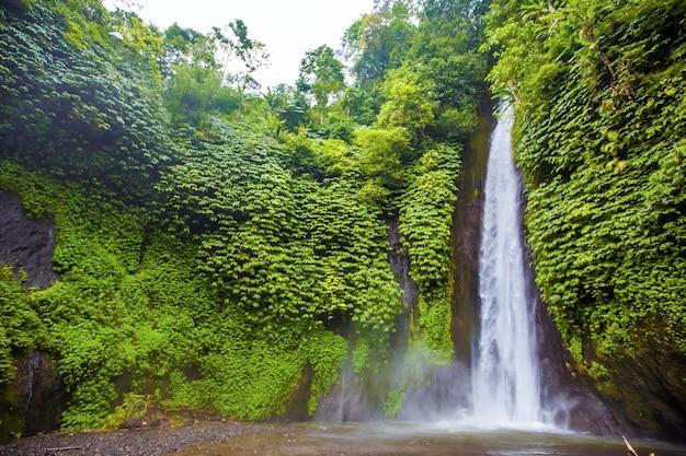 Водопад. экзотический туризм. остальной экватор. бали индонезия
