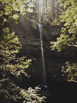 Водопад течет вниз по скале в пруду в окружении деревьев в солнечный день