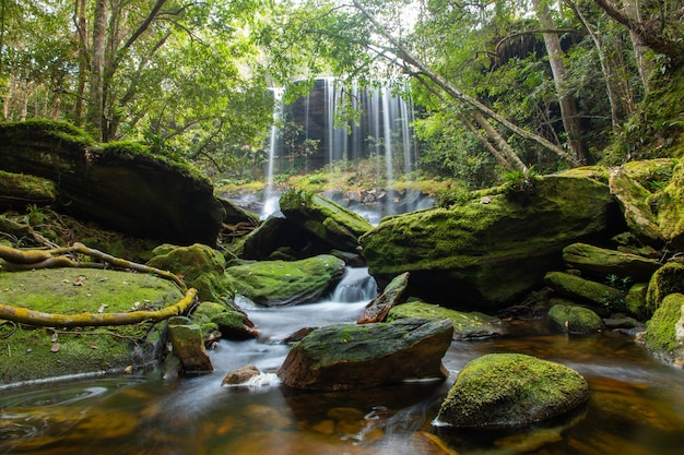 Waterfall in forest at phu kradueng national park in loei province southeast asia thailand