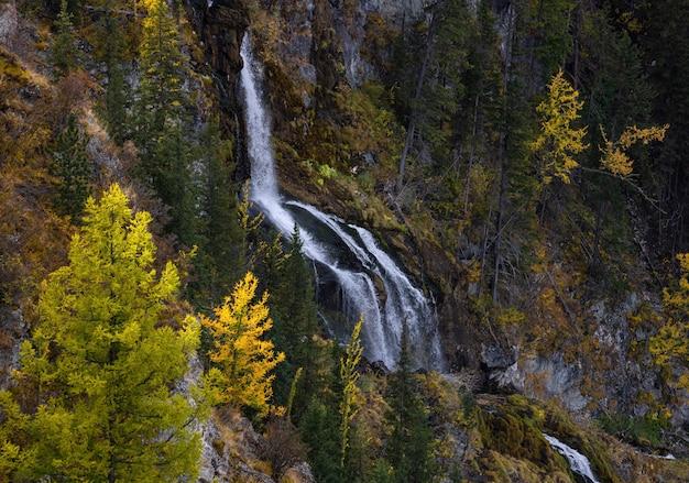 黄緑色のカラマツを背景に秋の山の高い滝