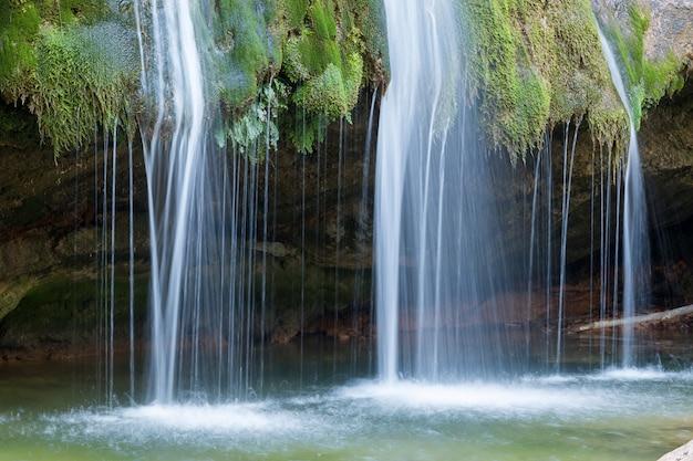 自然環境の中の滝