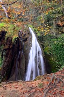 Водопад в лесу алтубе