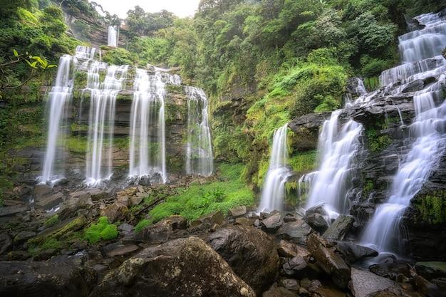 Водопад в лесу Premium Фотографии