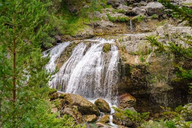 Водопад в зеленом лесу со скалами и соснами, обрамляющими водопад.