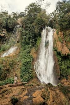 熱帯林の滝とそれを見ている女性