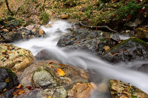 Waterfall at mountain river on stones flowing to down part