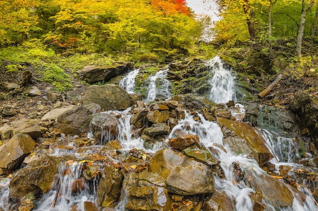 Waterfall in the mountains, autumn landscape