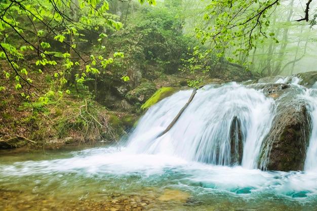 Водопад на реке покрыл зеленые листья в густом лесу. водопад в приятной обстановке. рекламные фоны для сайта или обои большого разрешения. понятие о природе, туризме и приключениях