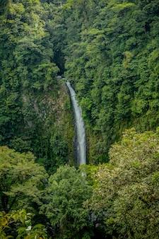 Waterfall in san carlos, costa rica.