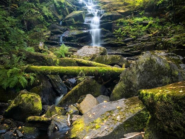 Waterfall white bridges. summer landscape. wild nature
