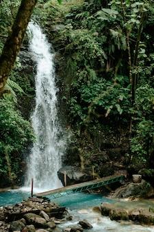 Alajuela, 코스타리카에서 숲 한가운데 나무 다리와 폭포. 프리미엄 사진