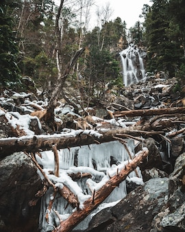 Waterfall with fallen trees and stalactites in the forest