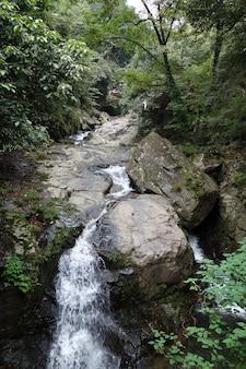 中国の苔で覆われた石の滝