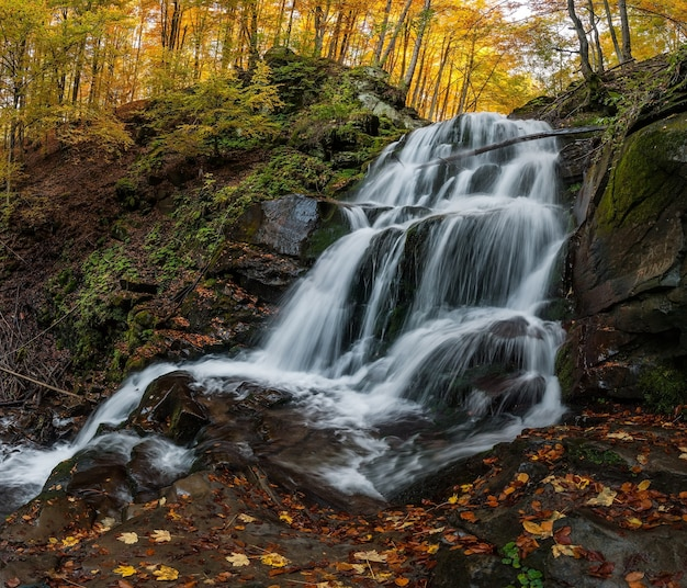 Waterfall with white jets in the forest