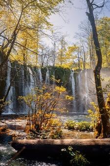 Водопады и деревья красивых плитвицких озер