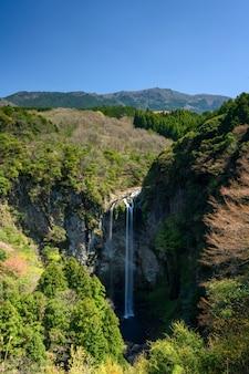 日中の緑の木々の真ん中にある滝