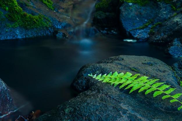 Водопады в горах паро ачех бесар район ачех индонезия