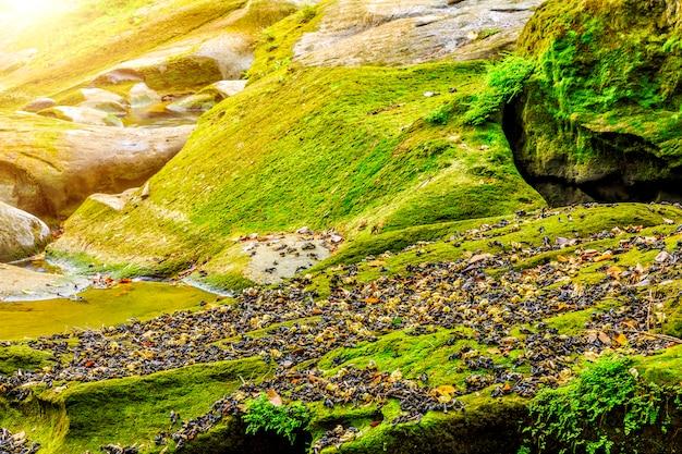 Водопады горы природа ручьи листья отражение