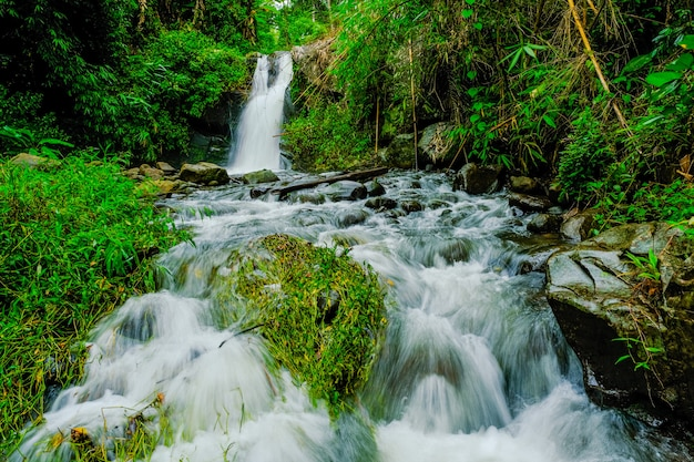 Waterfalls in the nature
