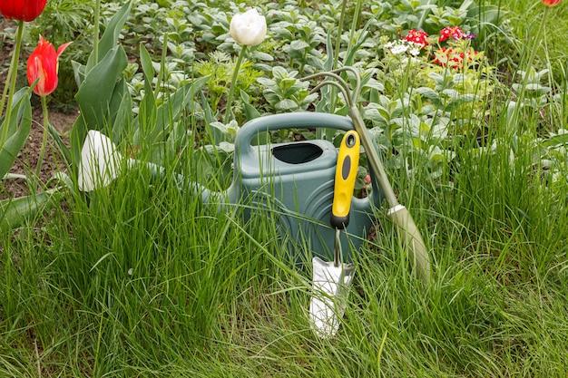 물 뿌리개, 작은 갈퀴, 푸른 잔디가있는 화단 옆 삽