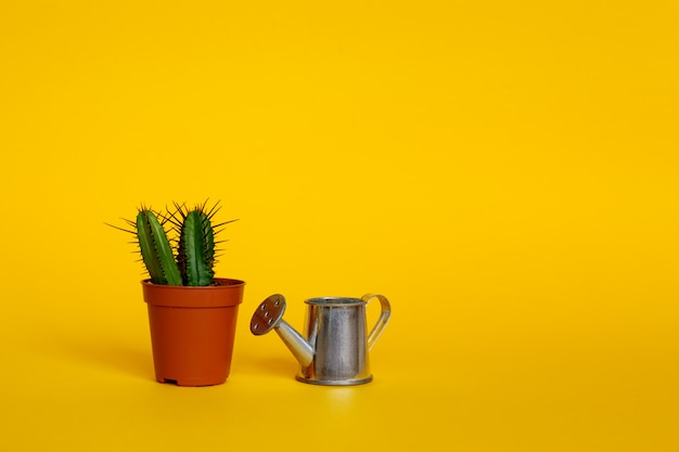 Watering can and cactus in a brown pot. copyspace