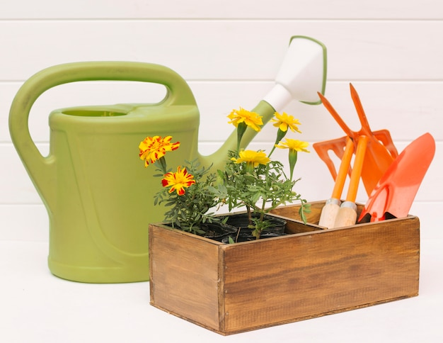 Watering can near blooms and garden equipment in box near wall