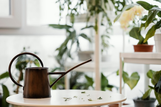 Watering can on table in the apartment with plants
