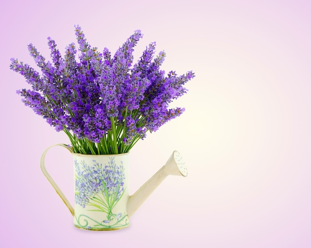 Watering can with plucket lavender