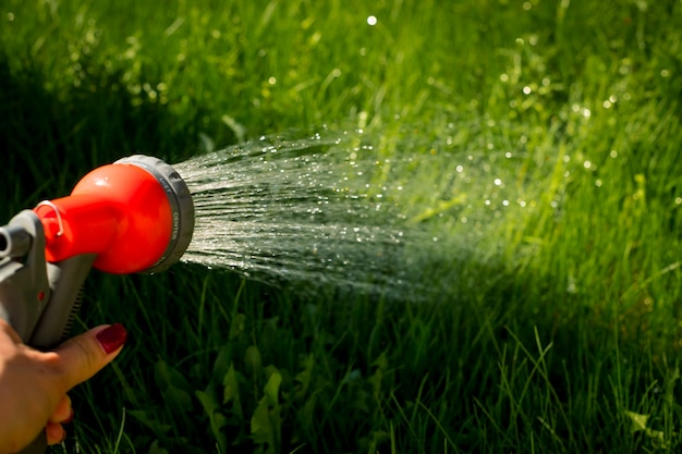 Watering garden equipment - hand holds the sprinkler hose for irrigation plants.
