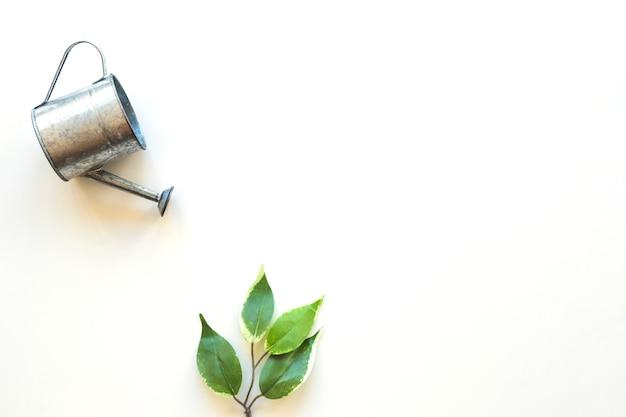 Полив горшок над зеленым листом