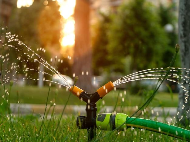 Полив газона с помощью автоматической системы полива на закате. уход за газоном и концепция садоводства.