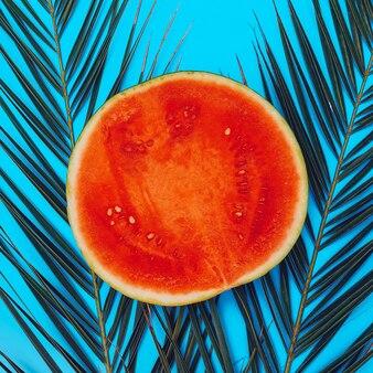 Watermelon flat lay минимальное веганское искусство