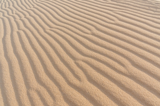 Wave of sand texture. mui ne,vietnam, copy space