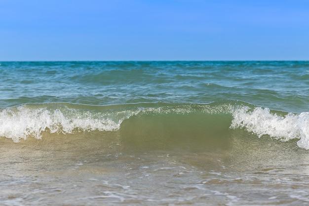 Wave on the sea coast line