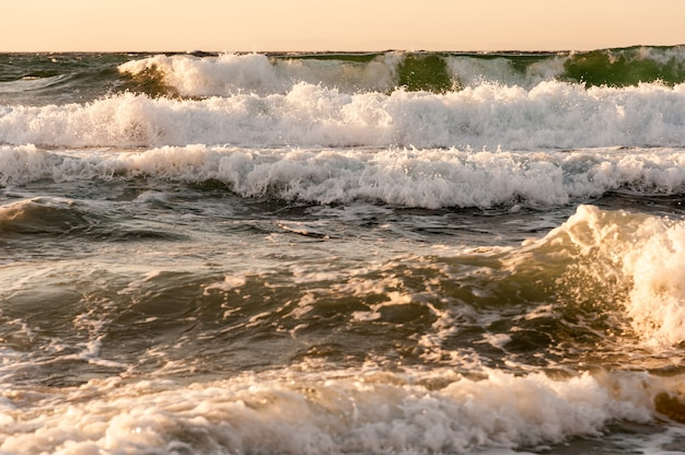 Wave of the sea in the sunset
