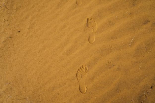 Волны и следы на песке в пустыне крупным планом