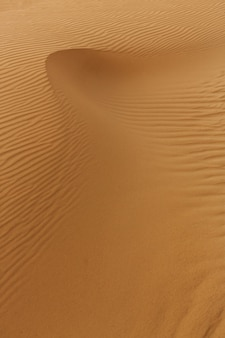 砂のテクスチャの波、砂漠の砂丘。