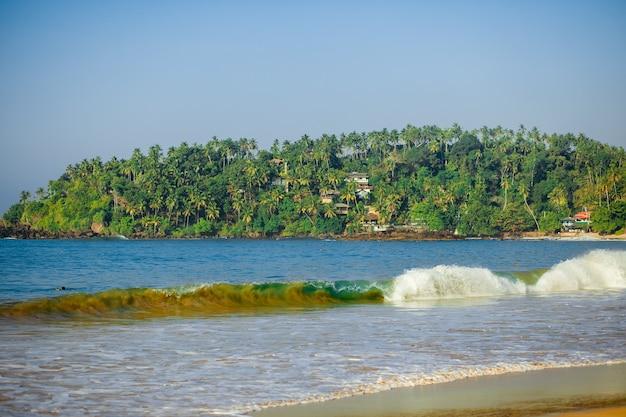ヤシの木のある島の波