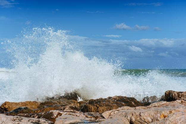 海の風景の波